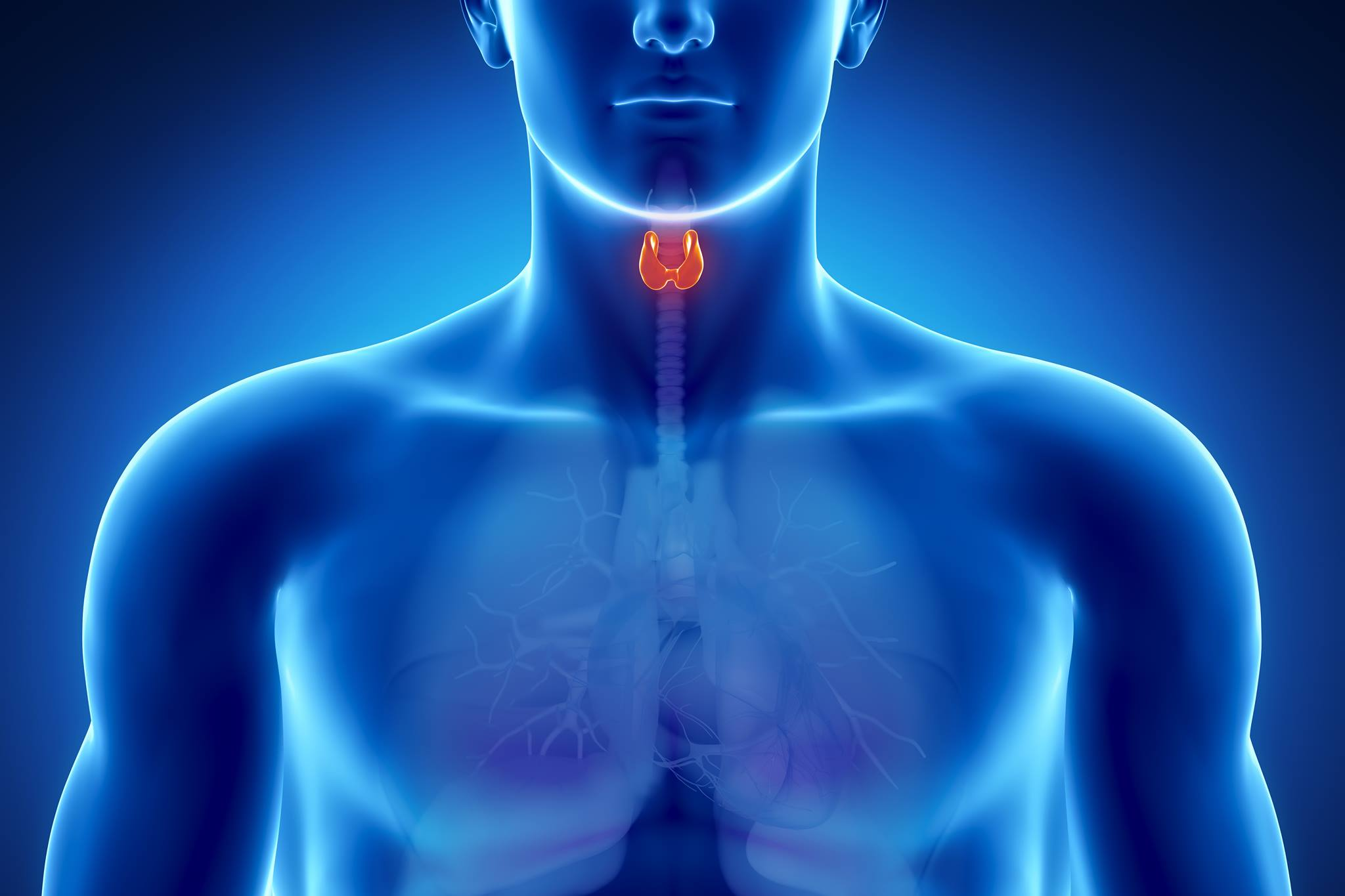 How To Check Your Thyroid Nwa Health Solutions Rogers Ar